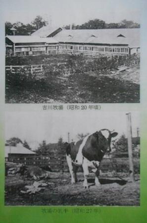 160820-113.jpg